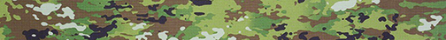 G-Army Training camo image