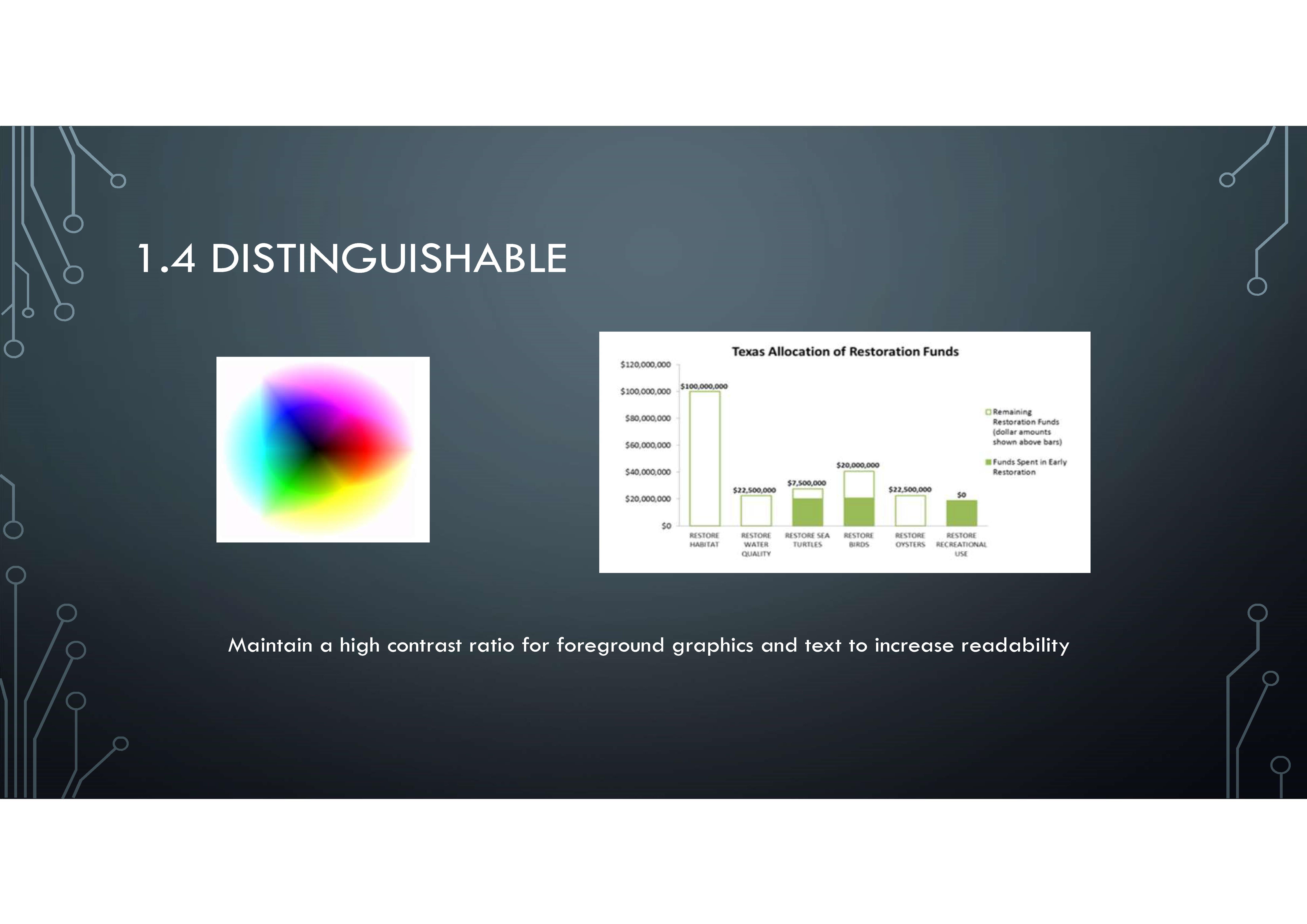 WCAG Presentation_Page_05